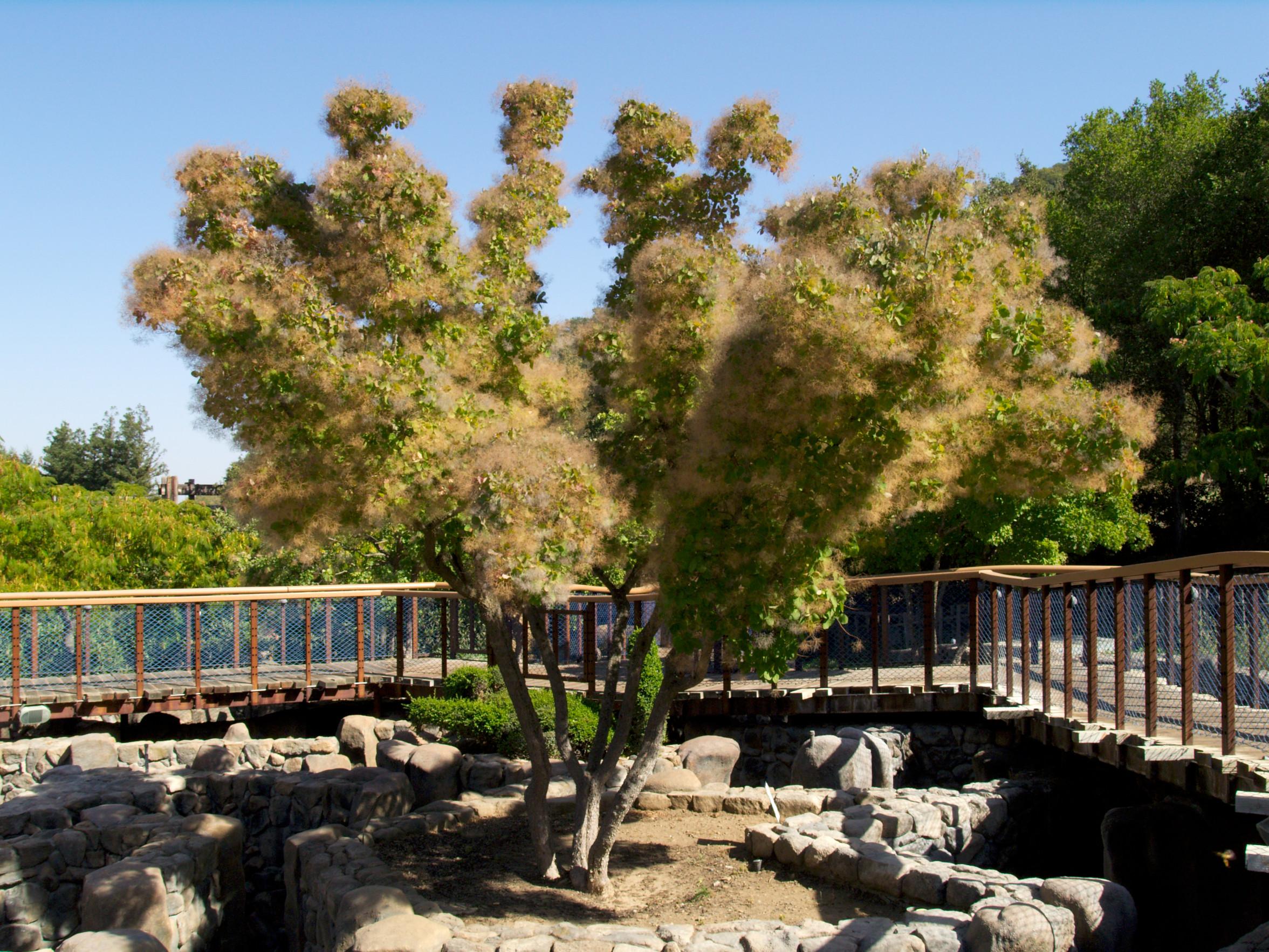 Bonfante Gardens 2006-09-22